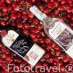 Licor y Aguardiente de cerezas. Valle del Jerte. Cáceres. Extre