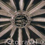Interior. Detalle del techo de la iglesia gótica de Santa Maria