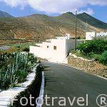 Foto reportaje de la isla de Fuerteventura en Las Palmas