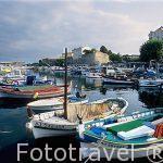 Puerto pesquero, al fondo las murallas de la ciudadela. Ciudad d