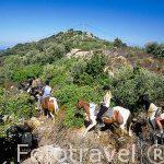 Cabalgando por las montañas cercanas a la población de ILLE-RO