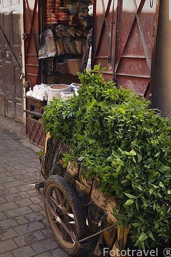 Carro cargado de hojas de menta. Medina, Patrimonio de la Humani