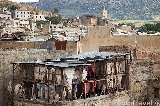Secadero de pieles de oveja, cabra, camello. Curtiduria de piele