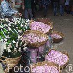 Vendiendo petalos de rosas. Medina del s.IX, casco historico pat
