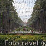 La Avenida Hassan II. En la ciudad nueva de FEZ. Marruecos
