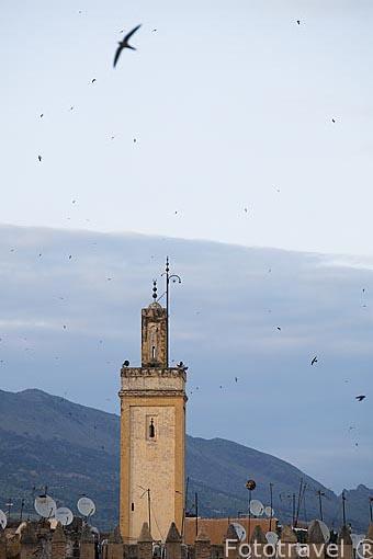 Minarete en la medina del s.IX, casco historico patrimonio de la