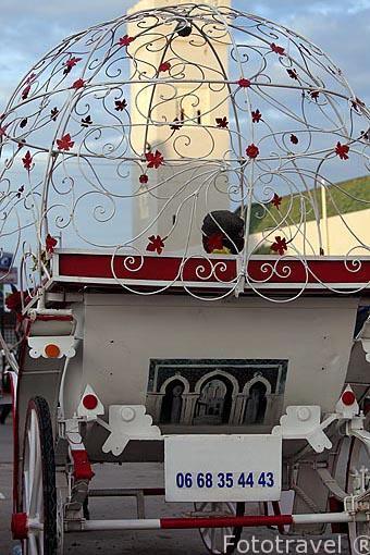Carruaje turistico junto a la medina del s.IX, casco historico p