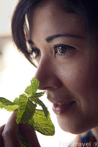 La menta protege de los malos olores. Se ofrece a los turistas e
