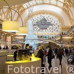 Interior del centro comercial StadsFeestzaal Shopping Center. En la calle comercial Meir. Ciudad de AMBERES - ANTWERPEN. Belgica