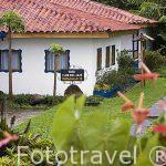 Casas con espaciosas habitaciones. Hacienda Los Girasoles. Municipio de ARMENIA. Eje cafetero. Colombia