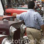 Los jeep Willys, muy utilizados en la zona del Quindio. CALARCA