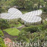 El mariposario. Jardin Botanico del Quindio. Calarca. Colombia