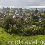 Vista panoramica sobre el valle de Cocora desde el mirador del pueblo de SALENTO. Quindio. Eje cafetero. Colombia