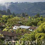 Vista sobre el valle de Cocora desde el mirador del pueblo de SALENTO. Quindio. Eje cafetero. Colombia