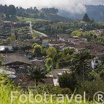 Valle de Cocora desde el mirador del pueblo de SALENTO. Quindio