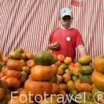 Mercado de los sabados. VILLE DE LEYVA. Departamento de Boyaca. Colombia. Suramerica