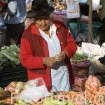 Vendedora en el mercado de los sabados. VILLA DE LEYVA. Departamento de Boyaca. Colombia. Suramerica