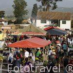 Mercado de los sabados. VALLE DE LEYVA. Departamento de Boyaca. Colombia. Suramerica