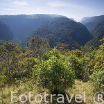 Valle de Arcabuco, por abajo discurre el rio del mismo nombre. Departamento de Boyaca. Colombia. Suramerica