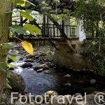 Antiguo puente. Parque Natural El Gallineral. En SAN GIL. Departamento de Santander. Colombia. Suramerica