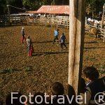 Rodeo. Pueblo de La Garita.GUANACASTE.Costa Rica.