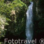 La cascada y laguna azul de la Cangreja. Parque Nacional del Rincon de la Vieja. COSTA RICA