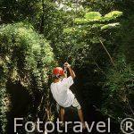 Descendiendo por una tirolina sobre el cañon de un rio. Organiza la hacienda Guachipelin. COSTA RICA.