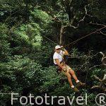 Canopy y tirolina. Rincon de la Vieja Lodge. COSTA RICA.