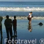 Despidiendo a una tortuga tras su puesta de huevos en playa Brasilito. GUANACASTE. Costa Rica. Centroamerica.