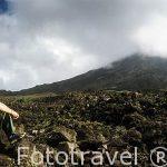 Sentado sobre la lava de la erupcion de 1992. Volcan Arenal. COSTA RICA. Centroamerica