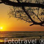 Atardecer en Playa Negra. GUANACASTE. Costa Rica. Centroamerica.