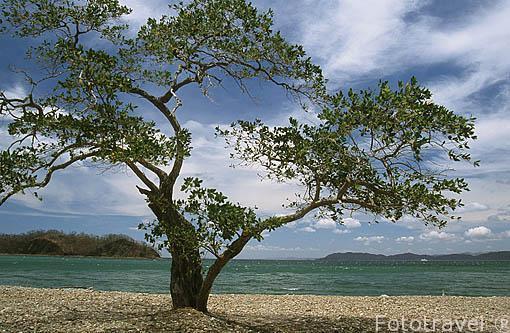Bahia Playa Blanca. Parque Nacional de Santa Rosa. GUANACASTE. Costa Rica. Centroamerica.