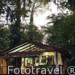La recepcion. Hotel entre la selva Namuwoki. En lengua Bri-bri significa la casa del Jaguar. Puerto Viejo. Costa Caribe. Costa Rica