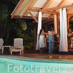 Piscina. Hotel entre la selva Namuwoki. En lengua Bri-bri significa la casa del Jaguar. Puerto Viejo. Costa Caribe. Costa Rica