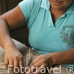 La Sra. Deisy trabajando las hojas de la planta senco para artesania. Comunidad indigena Yorquin de habla Bri-Bri. Costa Caribe. Costa Rica