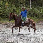 A caballo por el rio Escui. Comunidad Yorquin de habla Bri Bri. Costa Caribe. Costa Rica