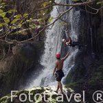 """Actividad """"Tarzan"""" junto a una cascada. Actividad proporcionada por la hacienda Guachipelin. Guanacaste. Costa Rica. Centro America"""