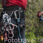 Canopy tour realizado en los árboles y barrancos cercanos a la hacienda Guachipelin. Guanacaste. Costa Rica. Centro america