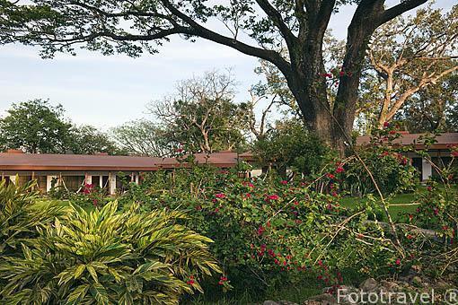 Hacienda Guachipelin. Guanacaste. Costa Rica. Centro america