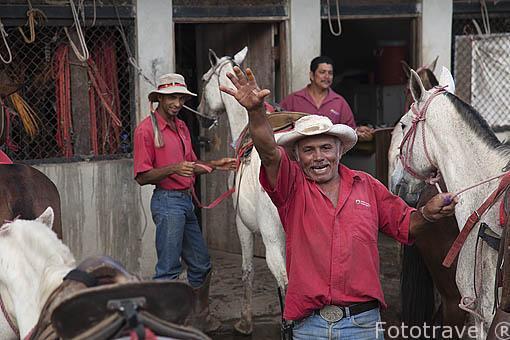 Mantenimiento de los caballos despues de una jornada de paseo con turistas. Hacienda Guachipelin. Guanacaste. Costa Rica. Centro america