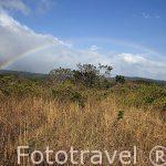 Parque Nacional Rincon de la Vieja. Guanacaste. Costa Rica