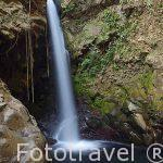Cascada la Oropendola. Cerca del Parque Nacional Rincón de la Vieja. Guanacaste. COSTA RICA