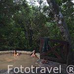 Chicas en piscina de barro volcanico. Spa de Simbiosis. Rincón de la Vieja. Guanacaste. COSTA RICA.