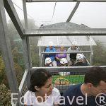 Teleferico Sky Tram sobre el bosque nuboso. Empresa Sky Adventures. Cerca del Parque Nacional de MOnteverde. Costa Rica