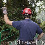 """Descenso en tirolina """"Sky Trek"""" sobre el bosque nuboso. Empresa Sky Adventures. Cerca del Parque Nacional de MOnteverde. Costa Rica"""