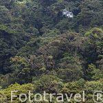 Teleferico Sky Tram sobre el bosque nuboso. Empresa Sky Adventures. Cerca del Parque Nacional de Monteverde. Provincia de Puntarenas. Costa Rica