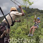 Canopy con tirolina con vistas sobre el volcan Arenal. Empresa Ecoglide. La Fortuna. San Carlos. Costa Rica