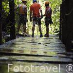 Monitores antes del descenso a un barranco. Zona de La Fortuna. Empresa Pure Trek Canyoning. Costa Rica