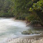 Playa Chiquita, cerca de Puerto Viejo. Provincia de Limon. Costa Caribe. Costa Rica