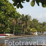 Barcas de pesca en Puerto Viejo. Provincia de Limon. Costa Caribe. Costa Rica